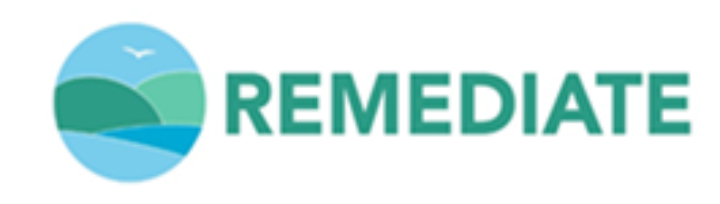 REMEDIATE Logo